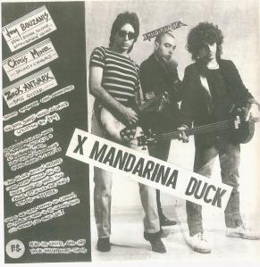 X-Mandarina Duck
