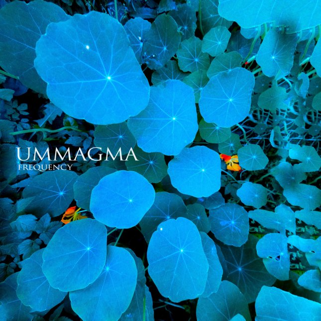 Ummagma Frequency