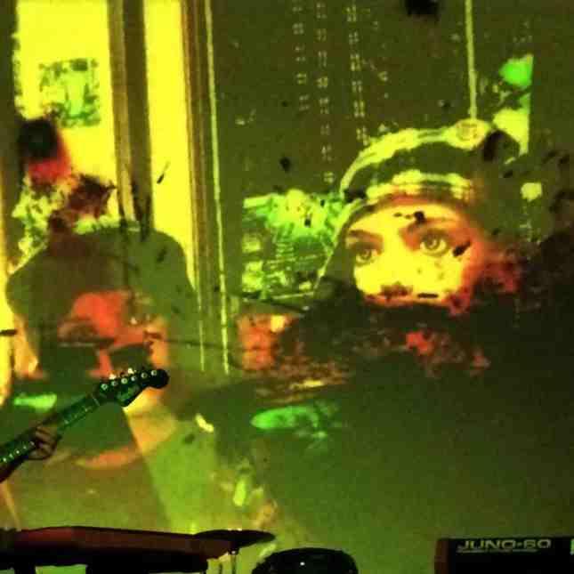 dyr-faser-trio-cover